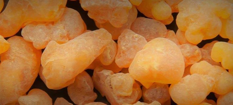 Nutraceutical ingredients manufacturer and Exporter | Aurea